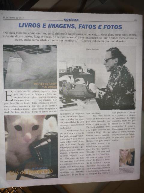 Notícia de Valinhos  Borges, o gato