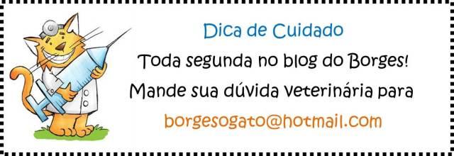 dica_de_cuidado_titulo