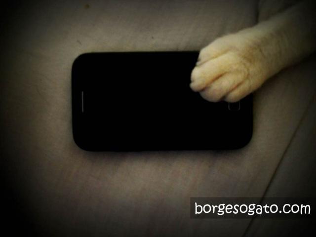 Eu com meu iPhone