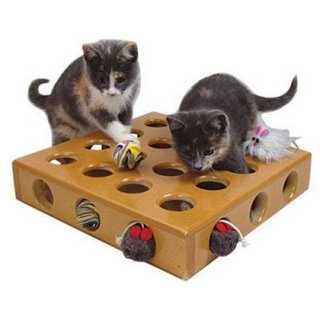 Um-brinquedo-especial-para-os-gatos